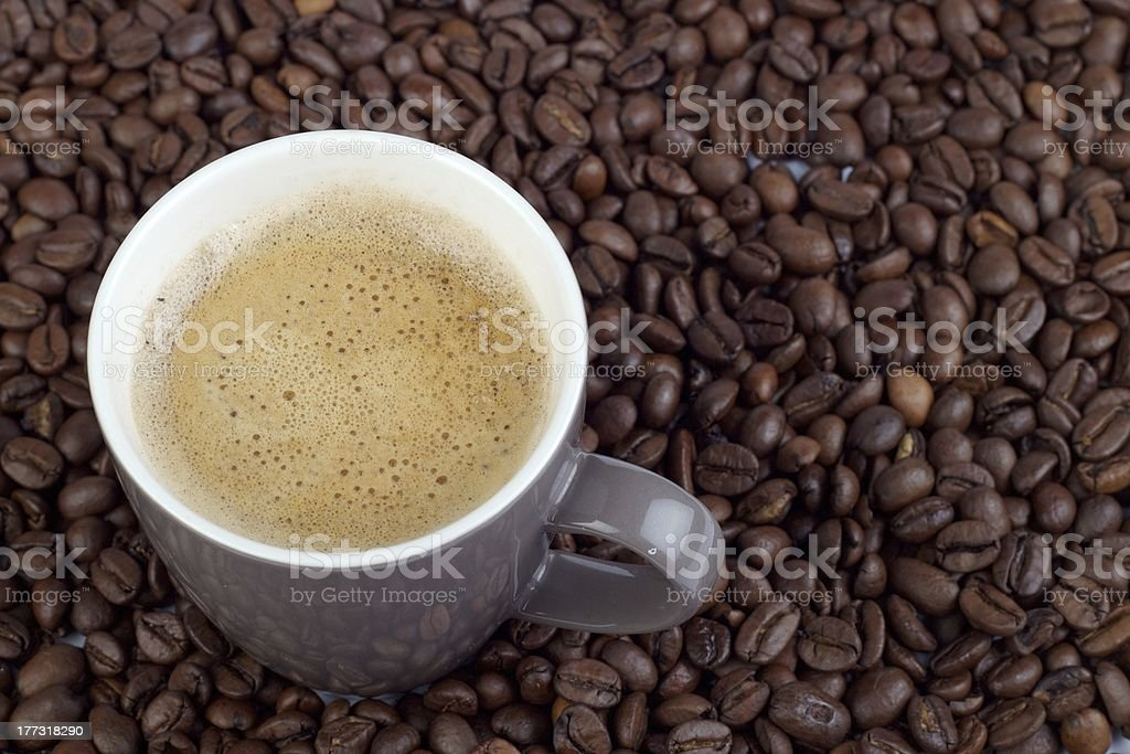 Coffee beans with a full cup stock photo