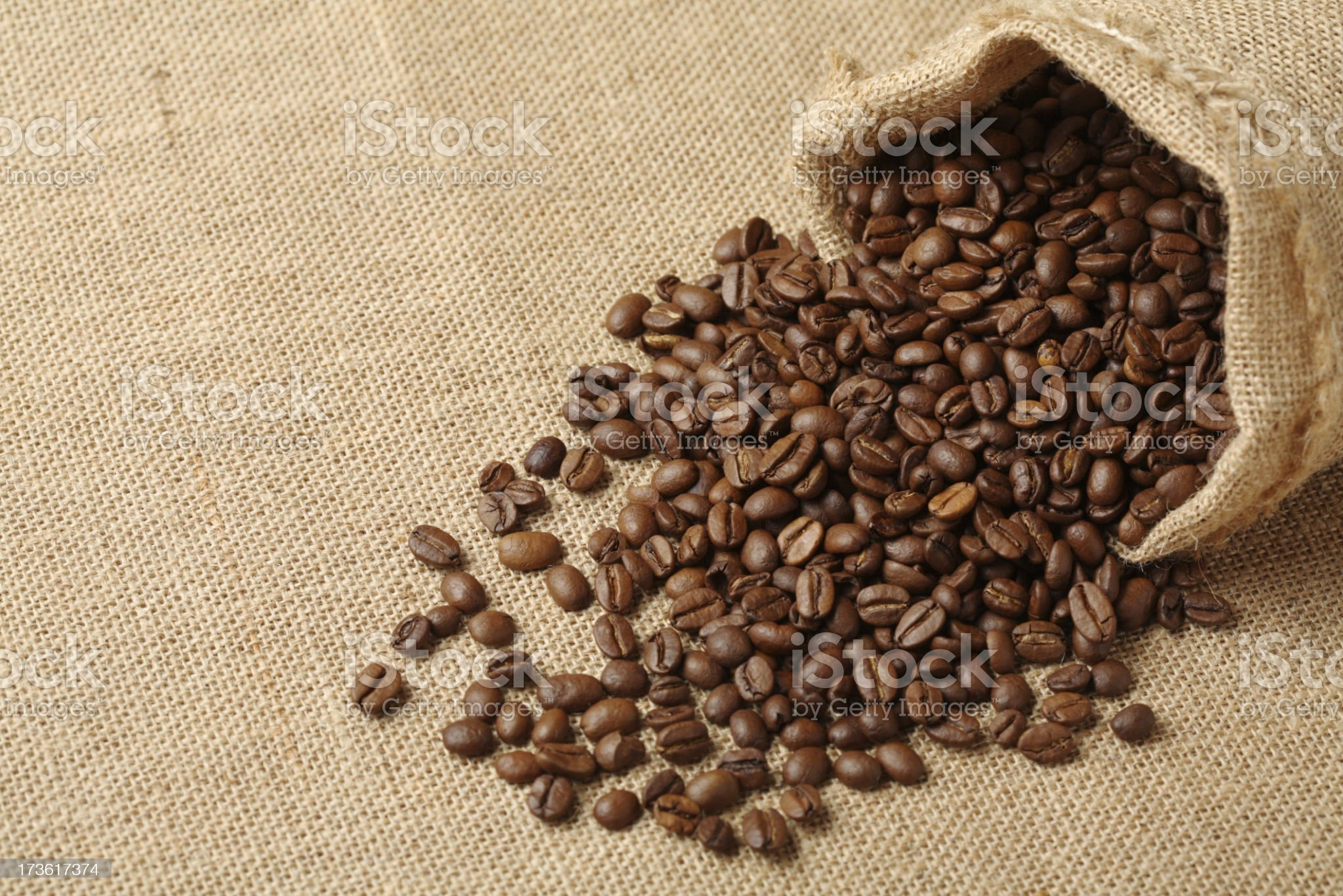 Coffee Beans with Sack royalty-free stock photo