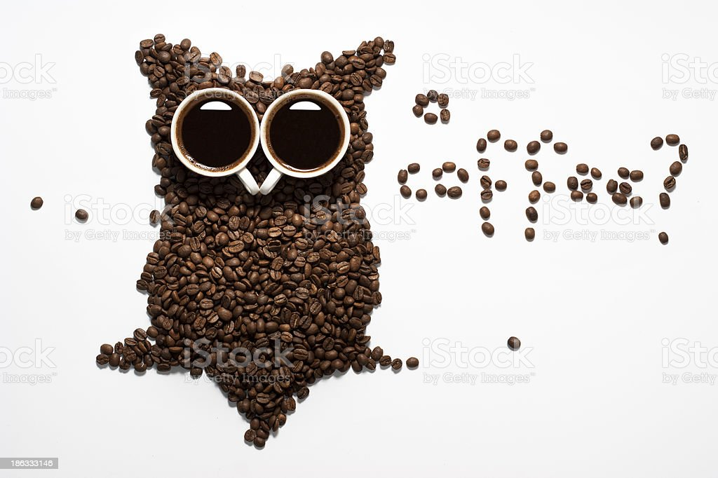 Coffee core owl stock photo