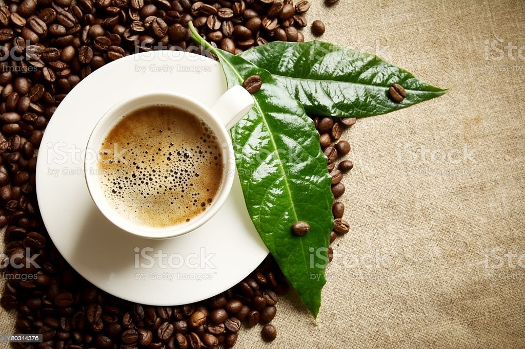 Coffee cup foam,beans on left,green leaves on flax stock photo