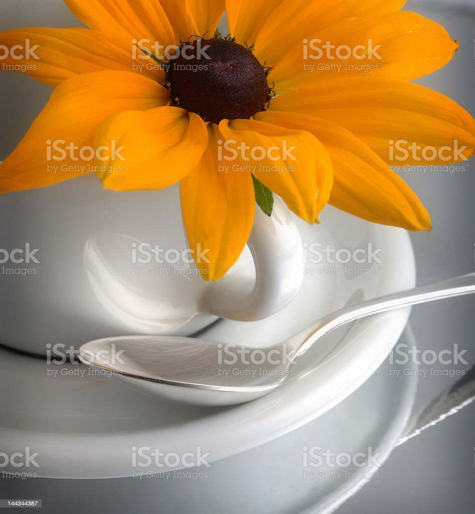 Coffee cup#3 royalty-free stock photo