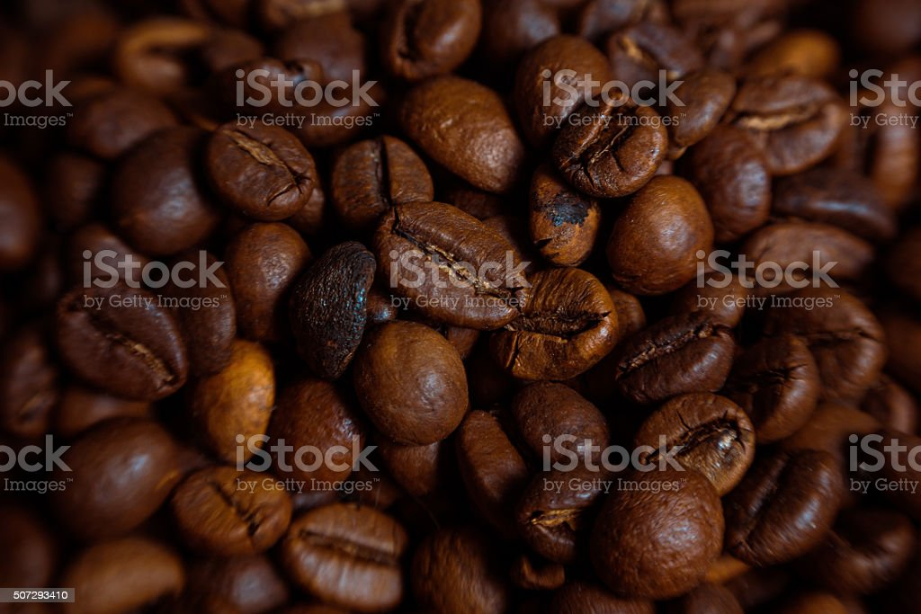 Coffee fresh coffee beans on wood ready to brew coffee stock photo