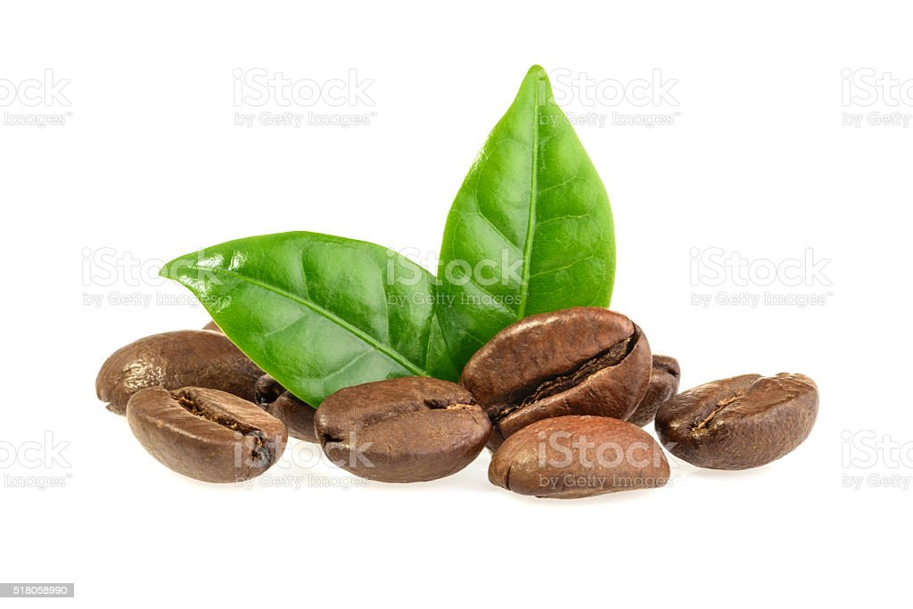 coffee grains and leaves isolated stock photo