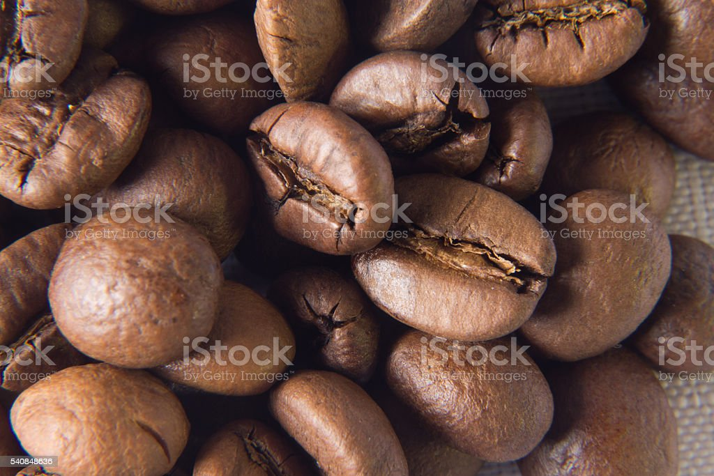 Coffee. Grains. Close-up stock photo