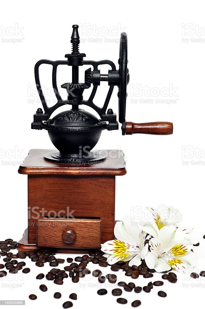 Coffee grinder with flower royalty-free stock photo