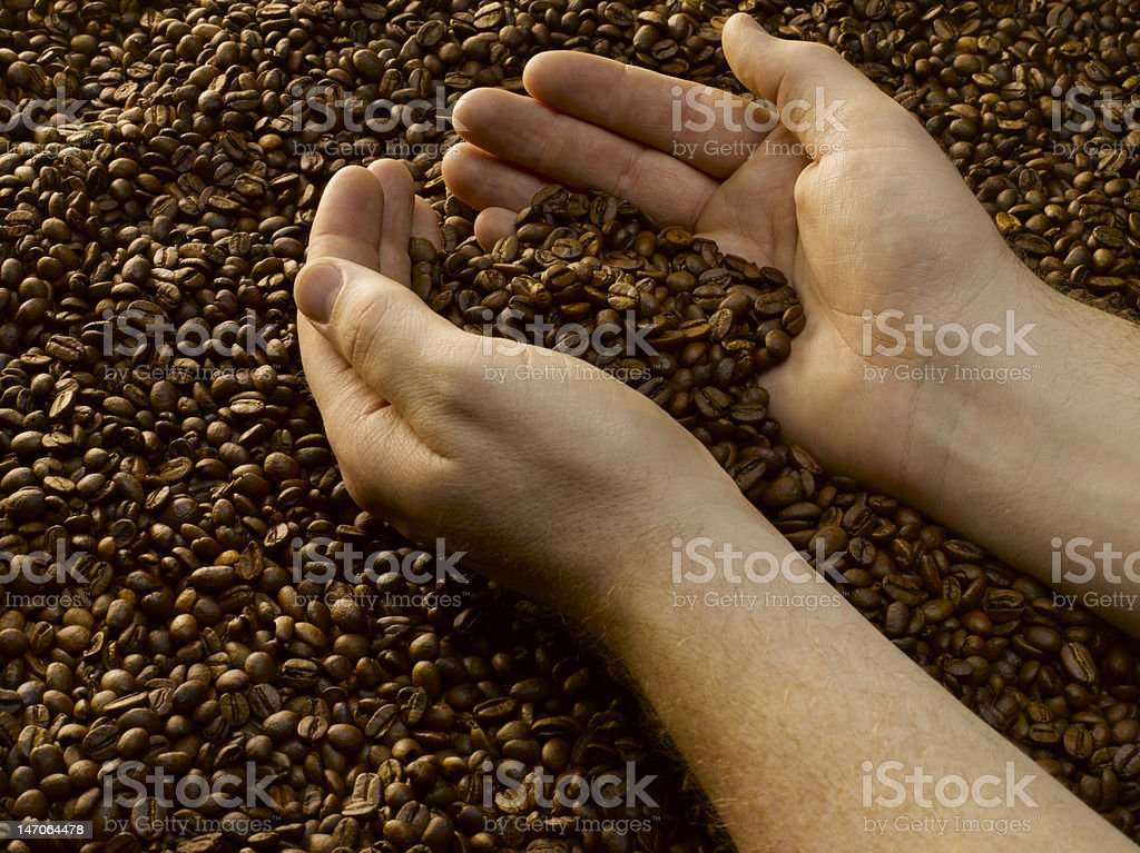 Coffee in hands royalty-free stock photo