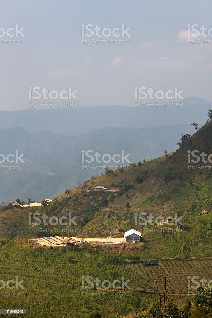Coffee Processing Plant royalty-free stock photo