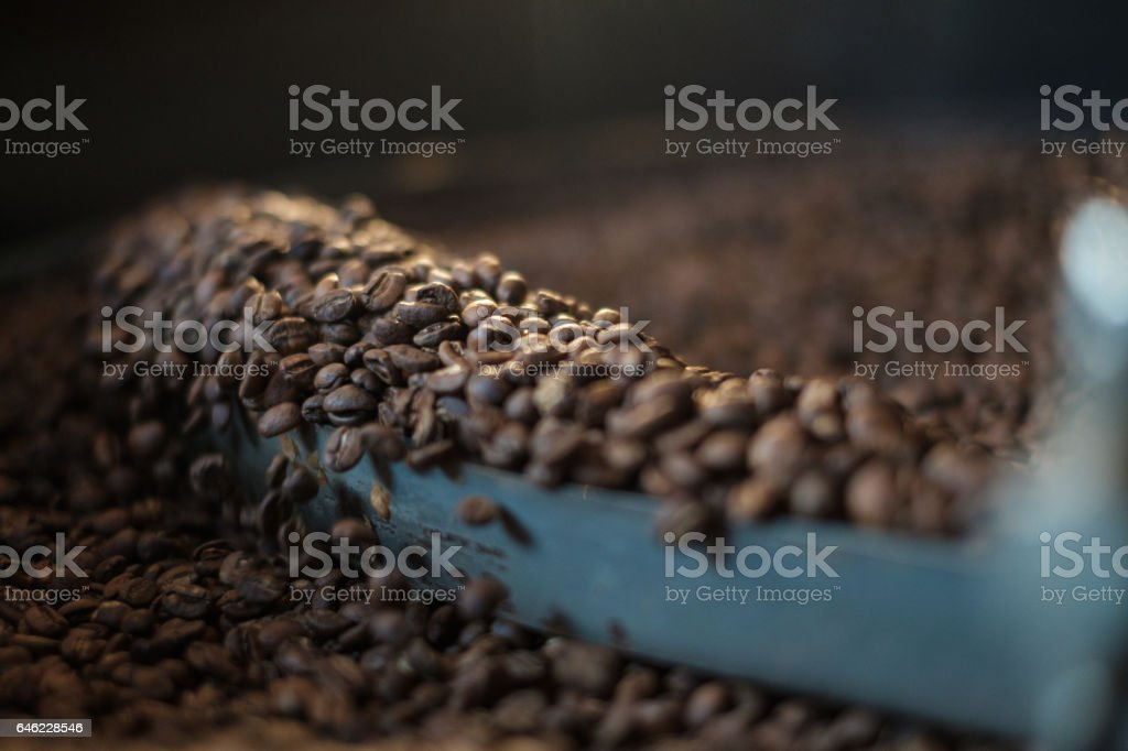 Coffee roaster cooling batch of fresh beans stock photo