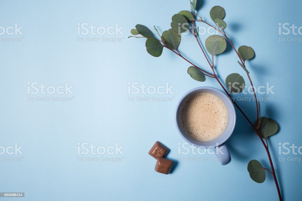 Coffee with chocolate chips and eucalyptus branch stock photo