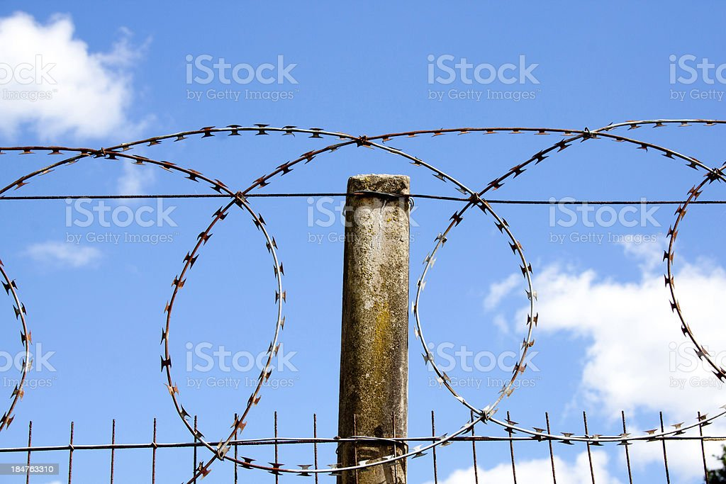 Coiled Razor Sharp Barbed Wire Against Blue DSky stock photo