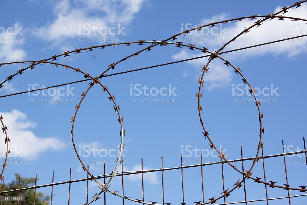 Coiled Razor Sharp Barbed Wire Against Blue Sky 2 stock photo