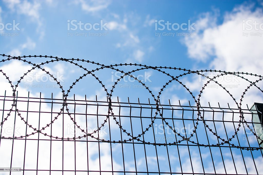 Coiled Razor Wire On Top Of A Fence stock photo