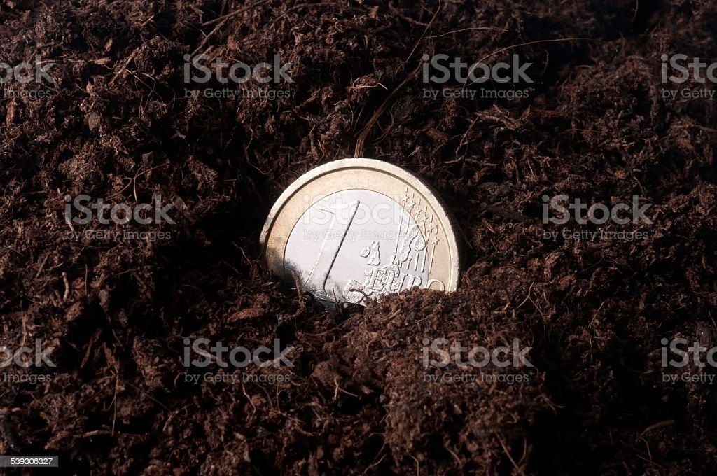 Coin one euro lost in the ground stock photo
