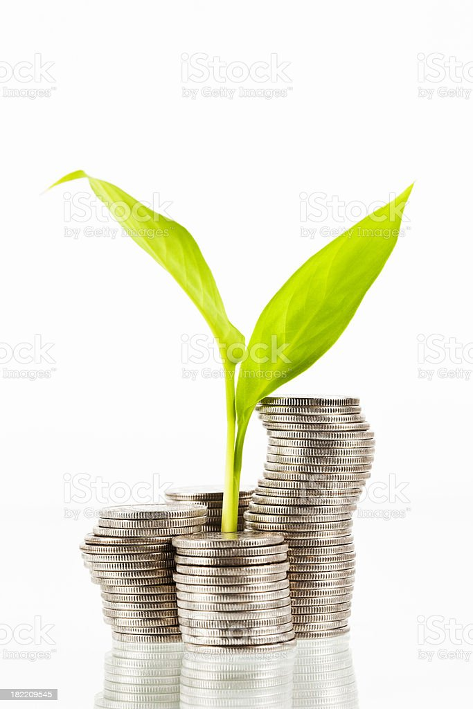Coins and plant finance stock photo