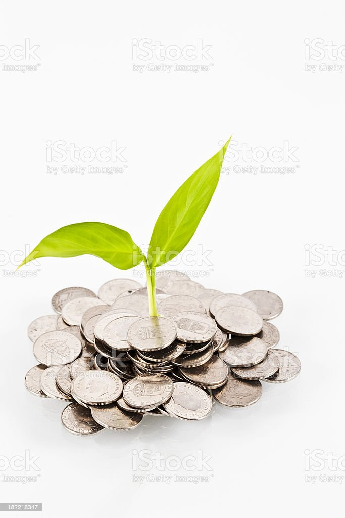 Coins and plant stock photo
