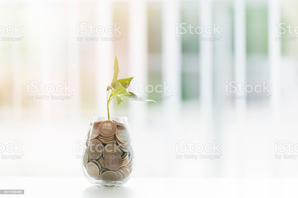 Coins and seed in clear glass on blurred background stock photo