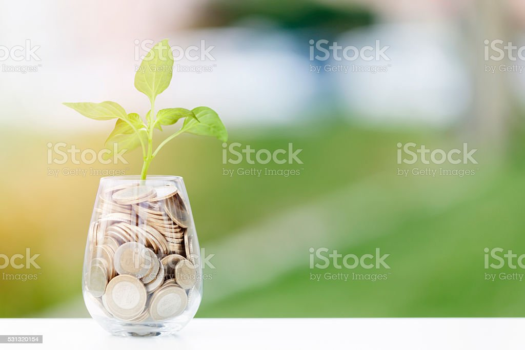 Coins and seed in clear glass on table stock photo
