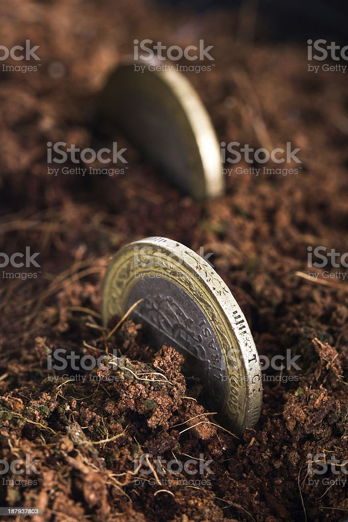 Coins in Soil royalty-free stock photo