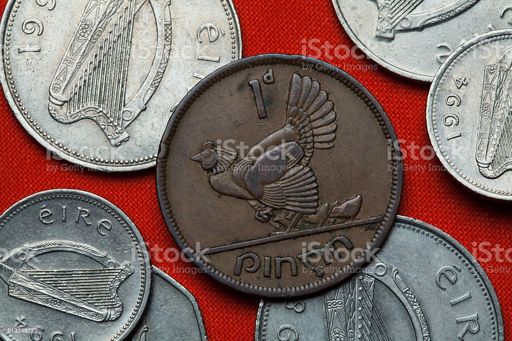 Coins of Ireland. Hen with chickens stock photo