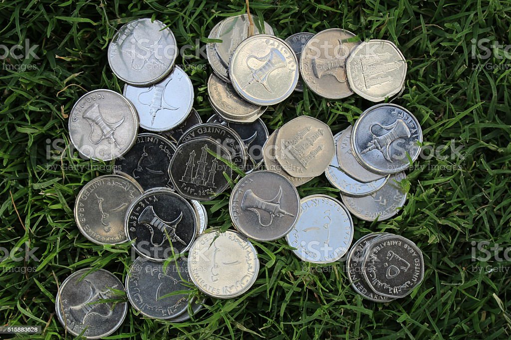 UAE coins on green grass - Stock Image stock photo