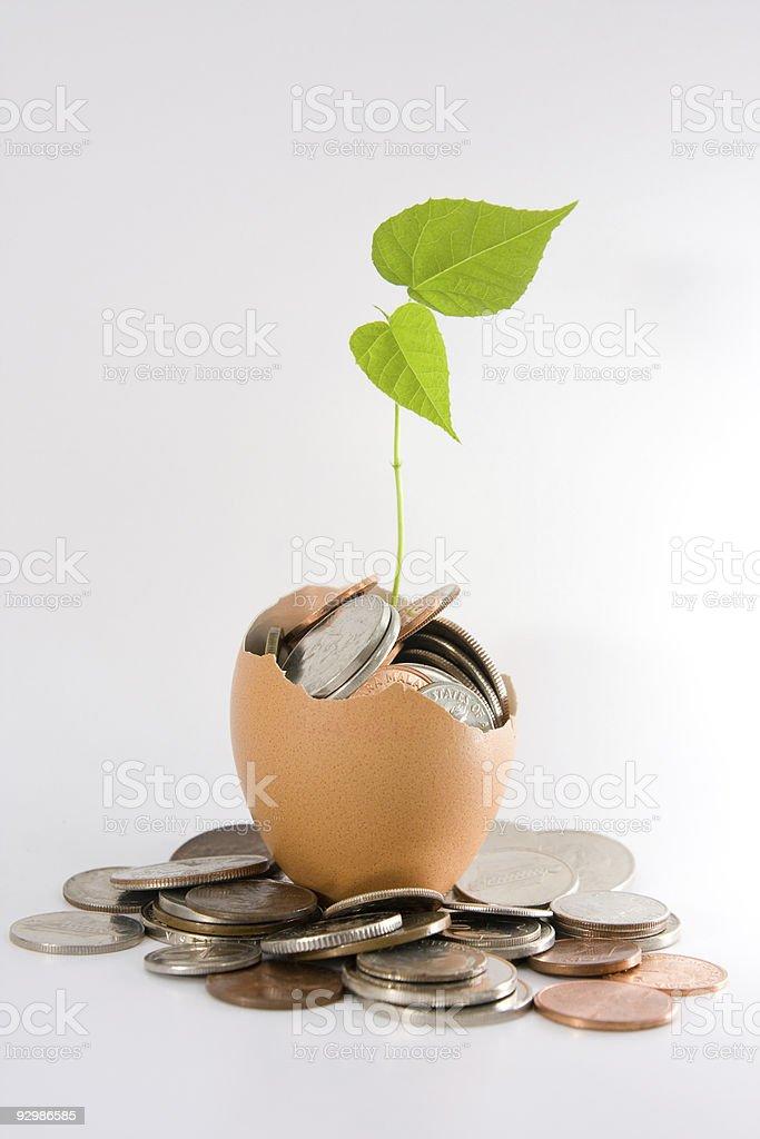 Coins, plant & egg stock photo