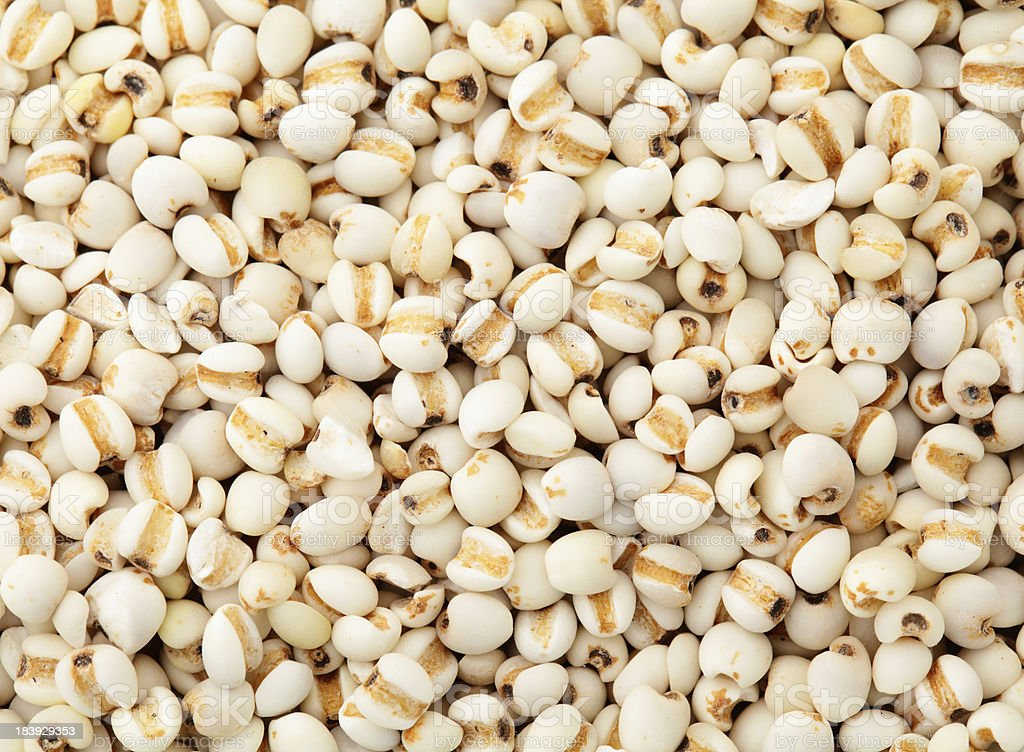 Coixseed background royalty-free stock photo