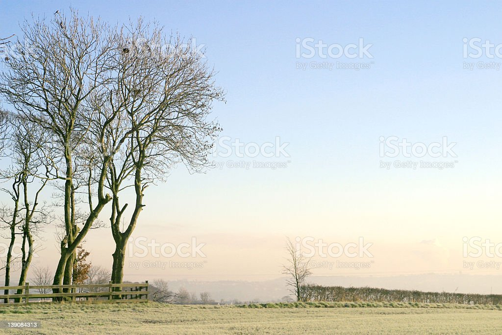 cold and misty morning royalty-free stock photo