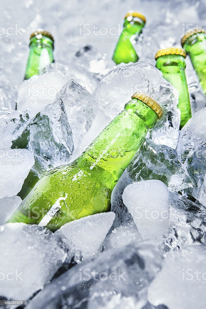Cold beer bottles on ice 1 stock photo