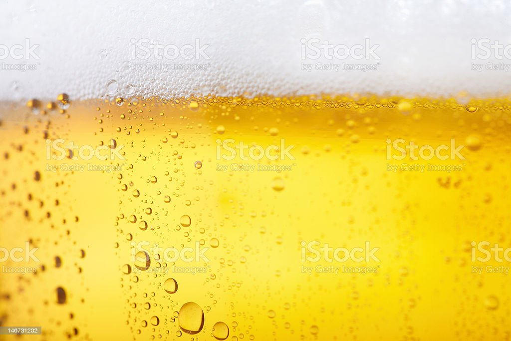 Cold beer stock photo