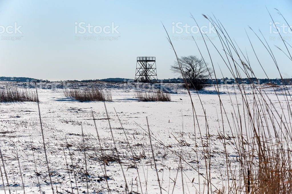 Cold day Parker River National Wildlife Refuge stock photo