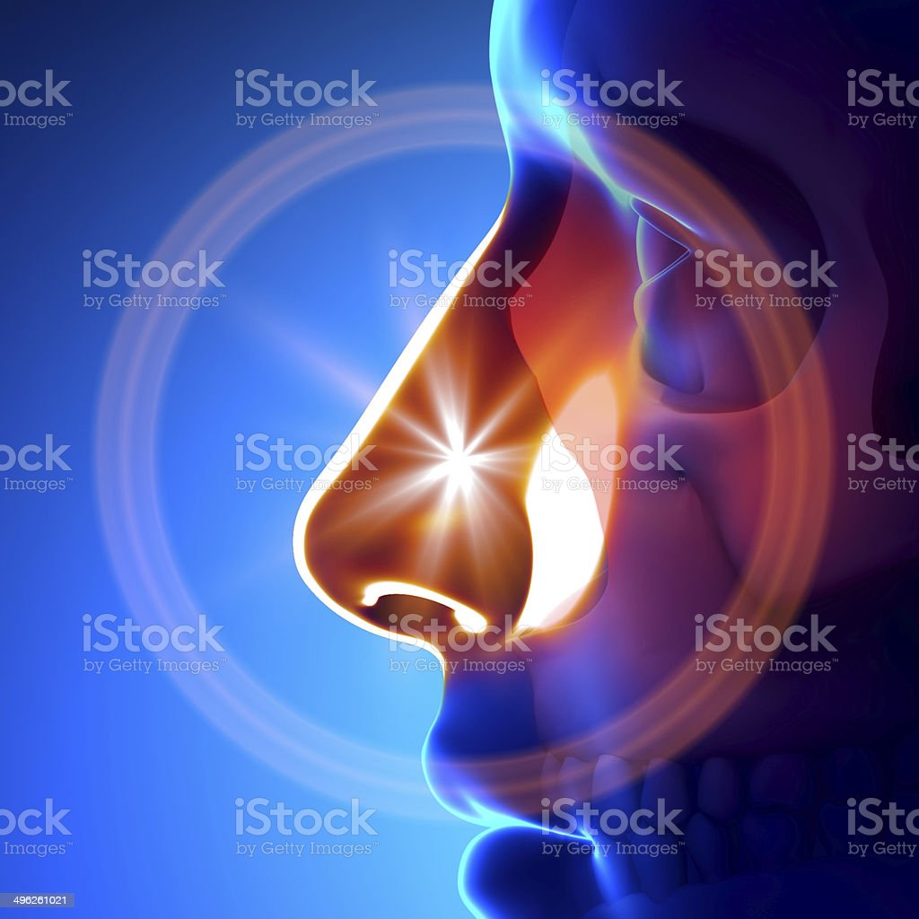 Cold / Flu - Full Nose stock photo