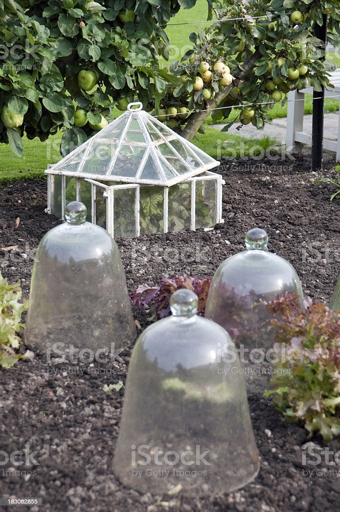 Cold Frame royalty-free stock photo