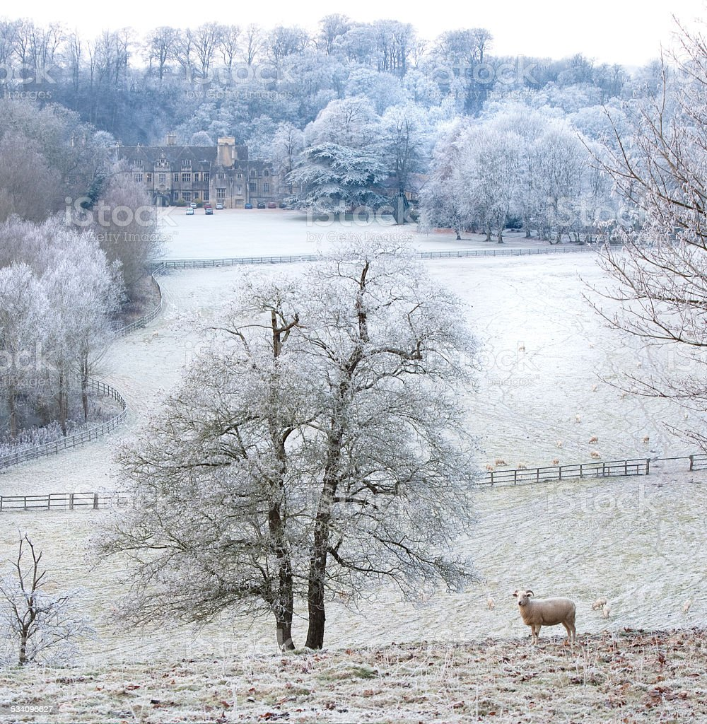 Cold frosty view over Cotswold valley stock photo