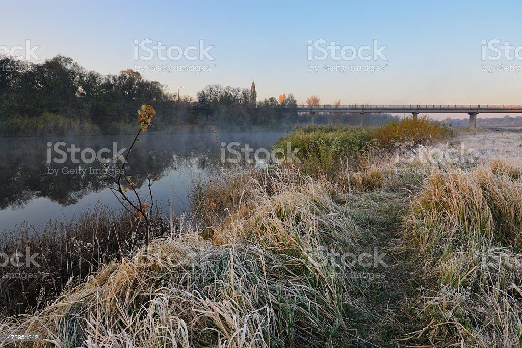 Frío por la mañana foto de stock libre de derechos
