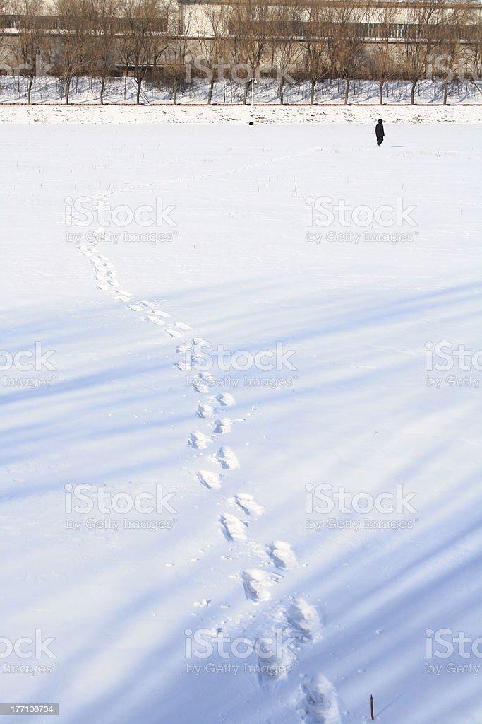 Cold Morning Walk royalty-free stock photo