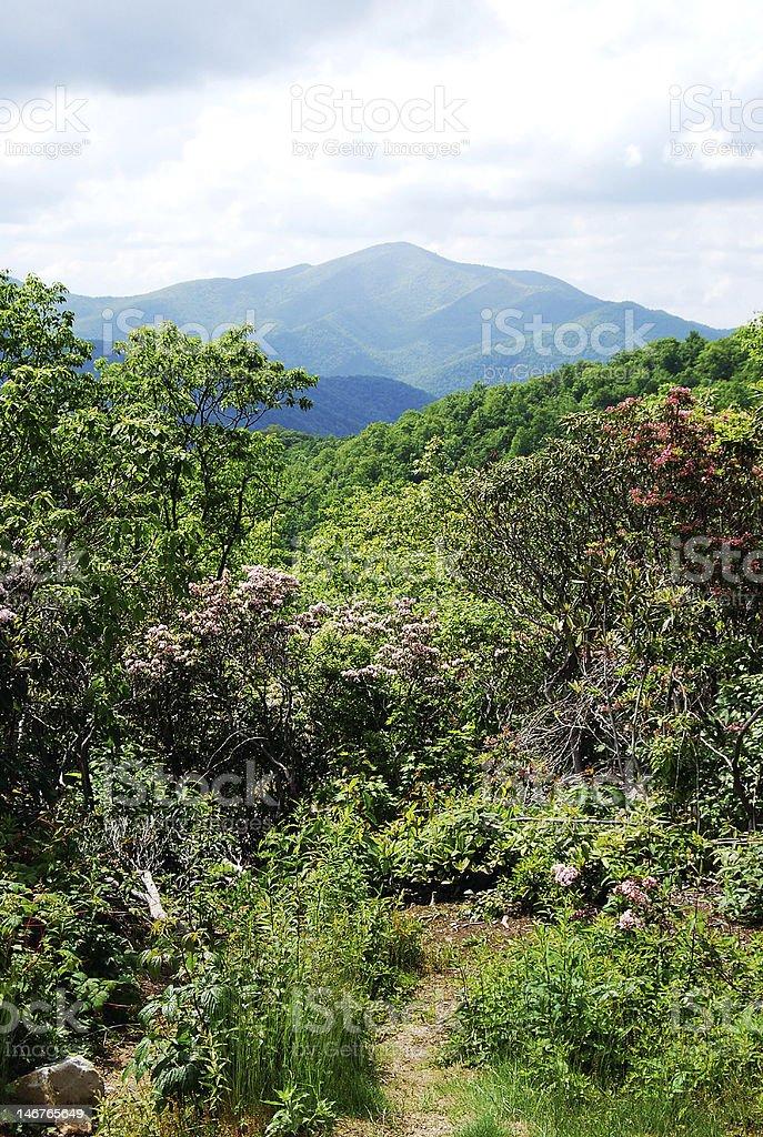 Cold Mountain, North Carolina royalty-free stock photo