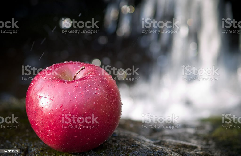 Cold Wet Crisp Apple stock photo