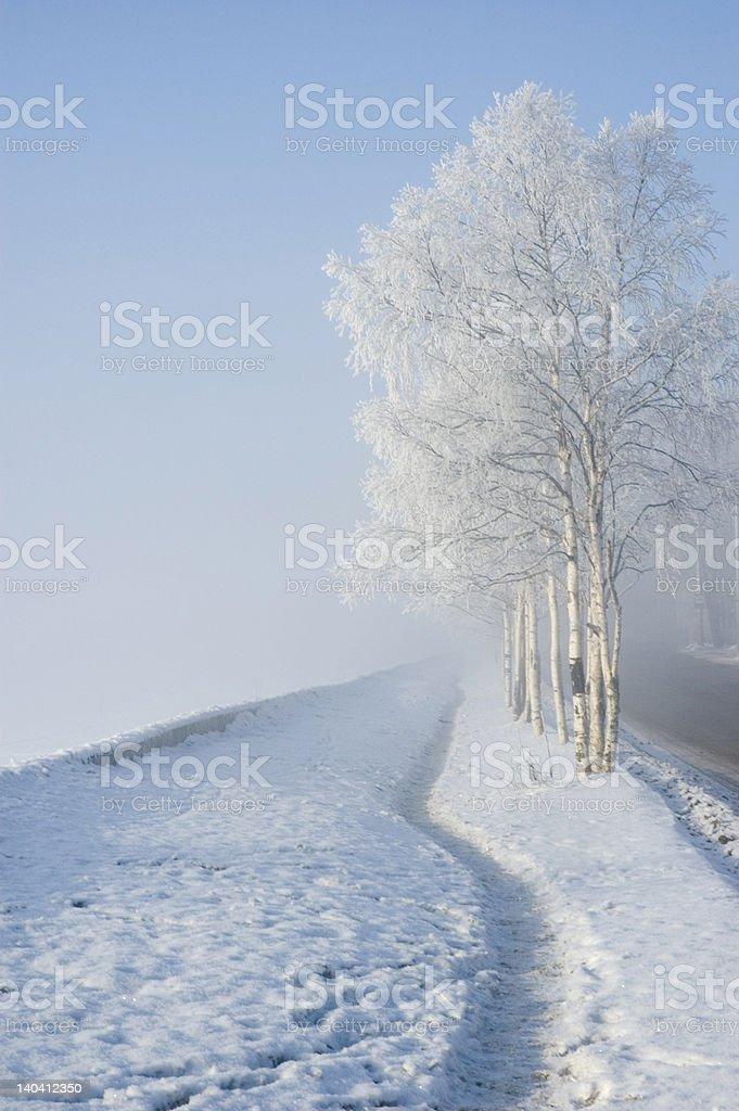 Cold winter landscape stock photo