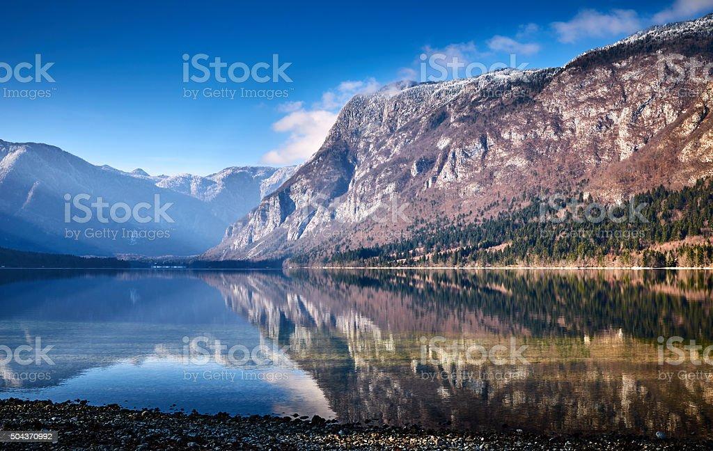 Cold winter morning at the Bohinj lake stock photo