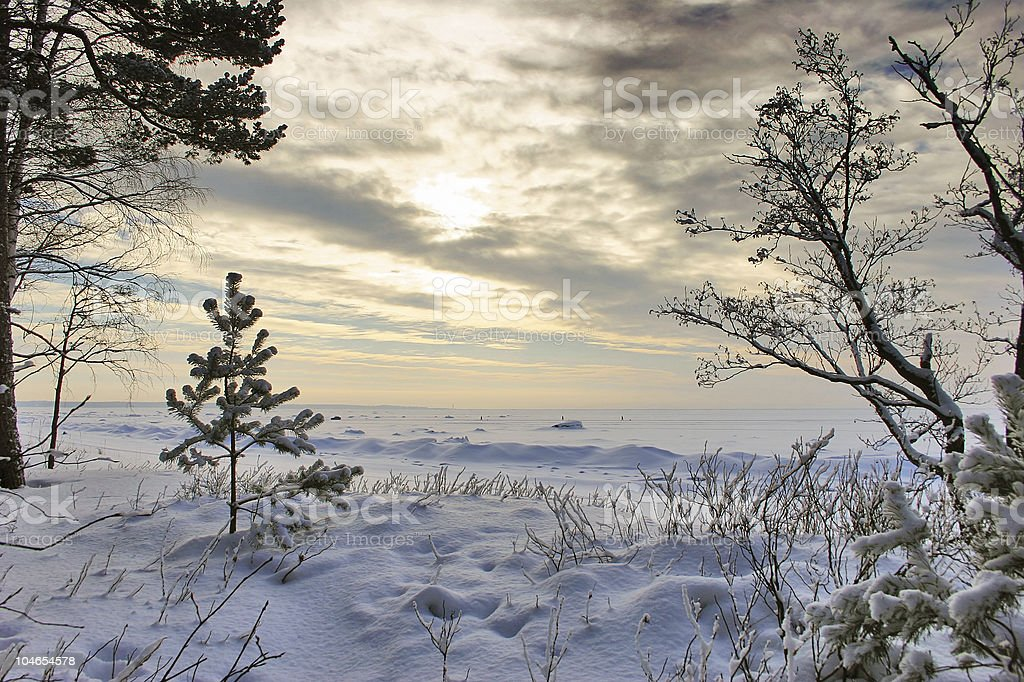 cold winter sunset royalty-free stock photo