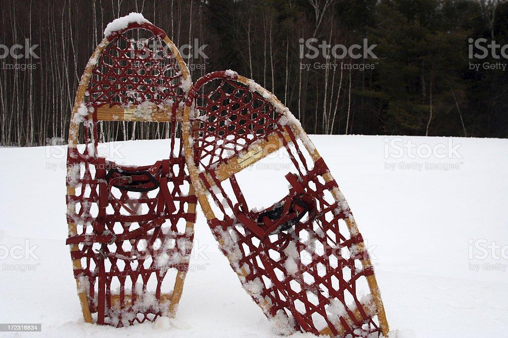cold winter walk royalty-free stock photo