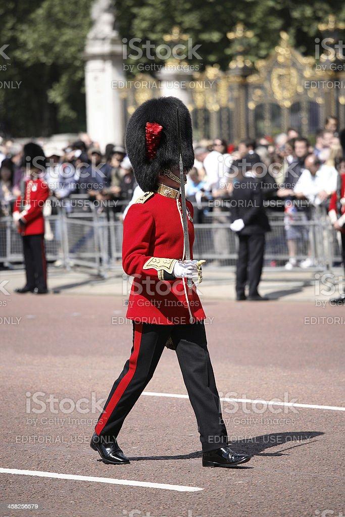 Coldstream Guardsman stock photo