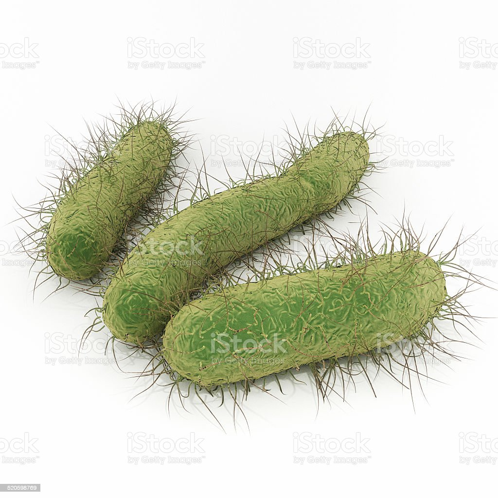 E. Coli Bacteria stock photo