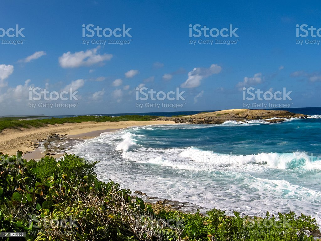 Colibris Point Beach Guadeloupe stock photo