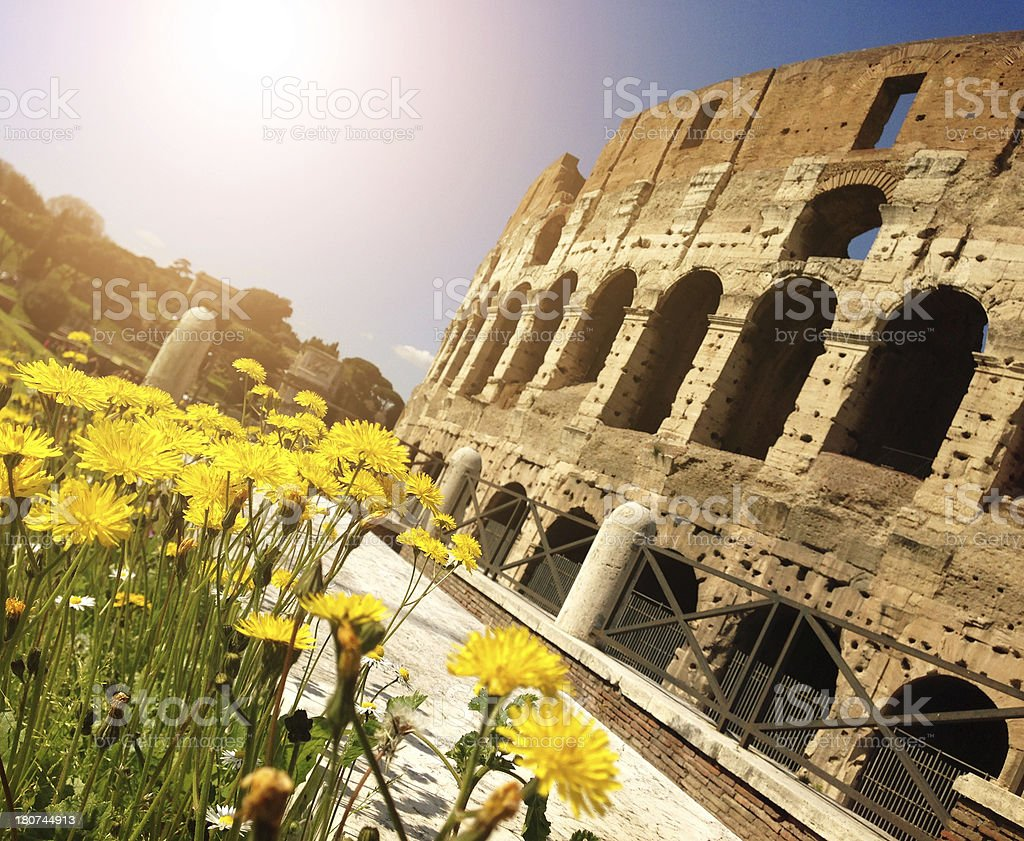 Coliseum and summer in rome shot with smartphone royalty-free stock photo
