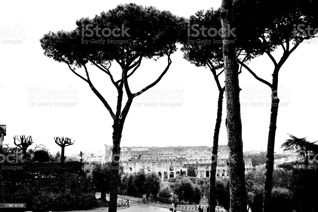 Coliseum, Rome royalty-free stock photo