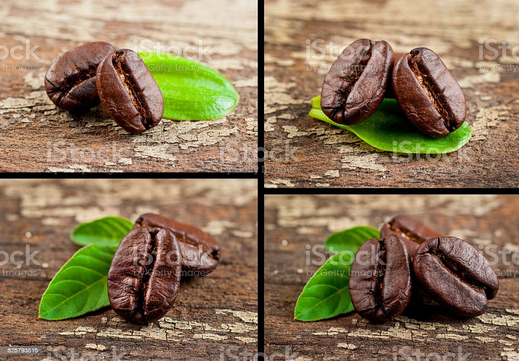 collage of coffee grains stock photo