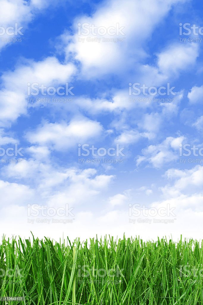 Collage of Grass and Sky royalty-free stock photo