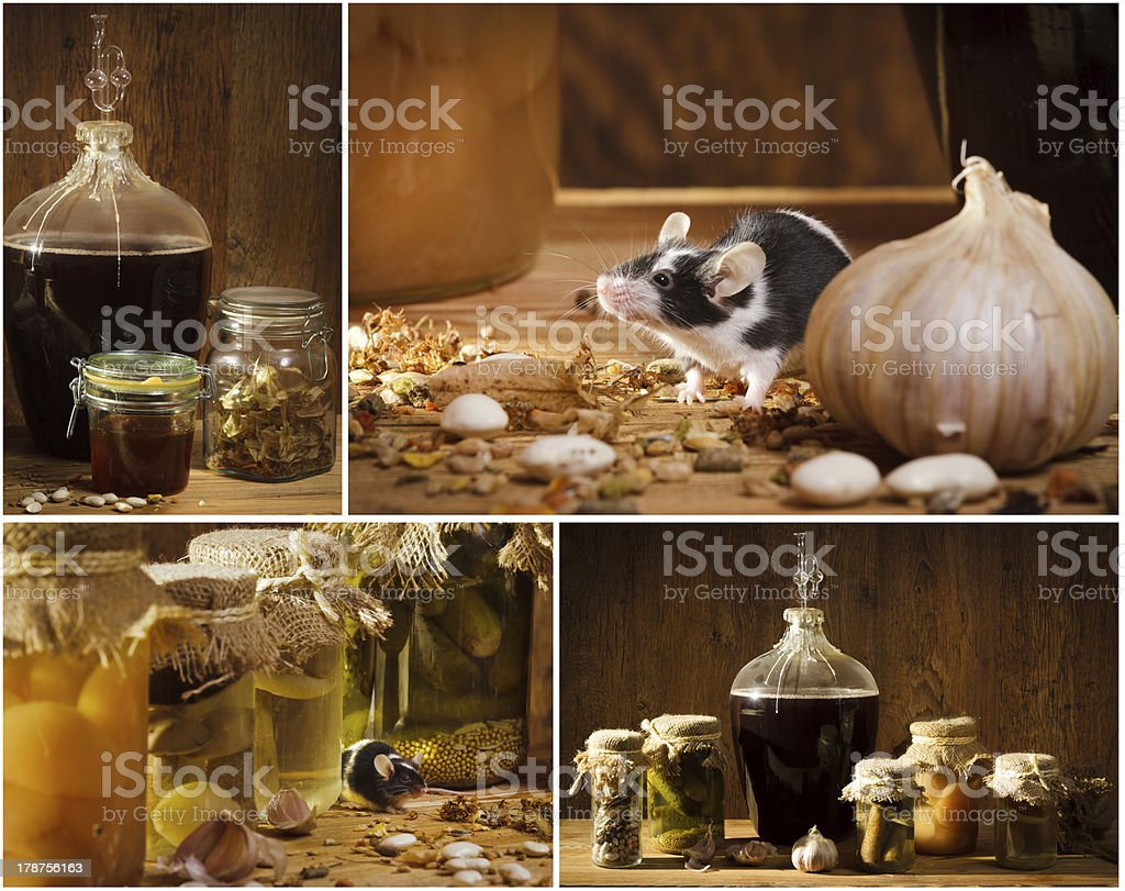 Collage of stocks jar in the basement with small mouse royalty-free stock photo