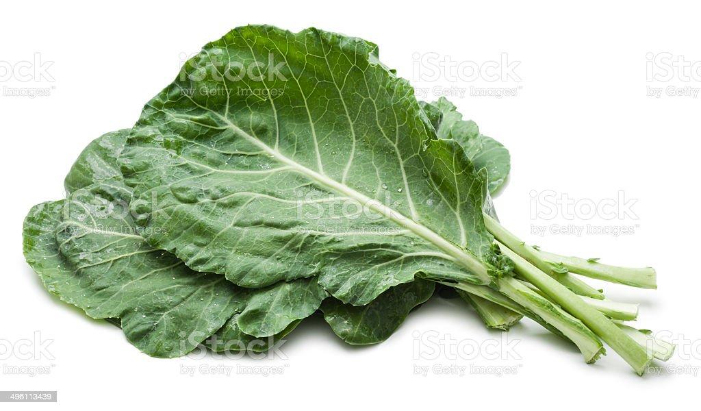 Collard greens bunch stock photo